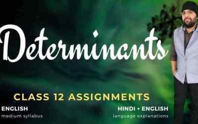 Ch04. Determinants Class 12 Assignments